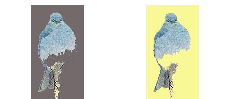 Two Bluebirds drawings with different backgrounds