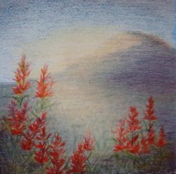 Colored Pencil Landscape Study by Lisa Gibson