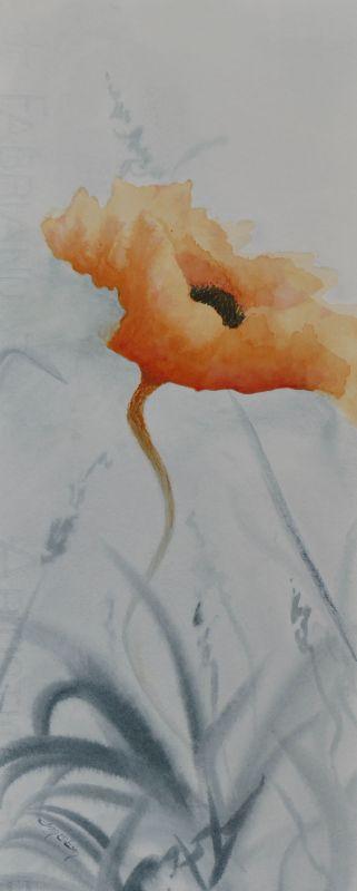 Blooming Life Orange Poppy