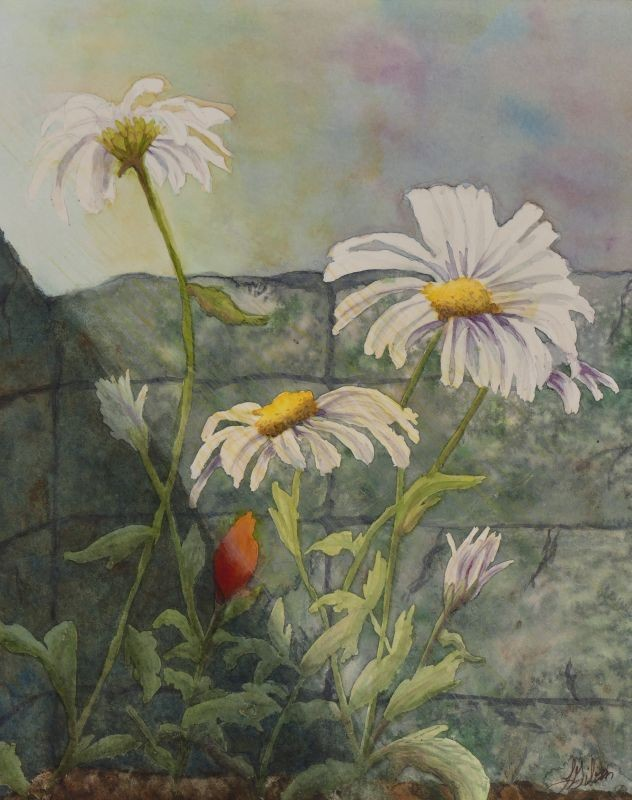 Up Against the Wall daisy painting by Lisa Gibson