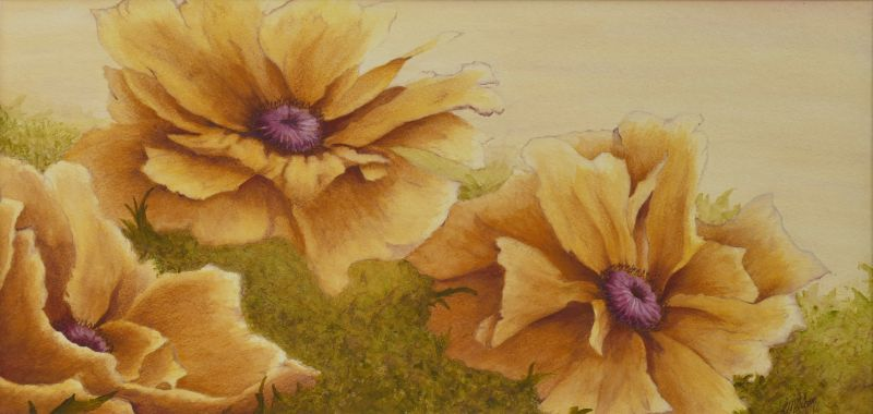 Gold Poppy Painting in Watercolor & Acrylic