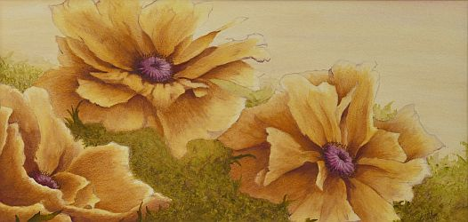 Discovering Gold Poppy Painting by Lisa Gibson