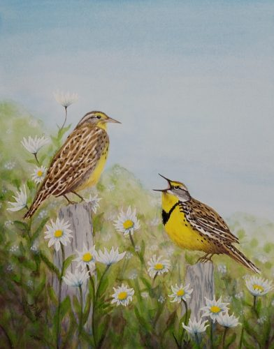 Meadow Lark painting by Lisa Gibson
