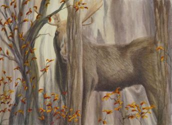 Making An Appearance Moose Painting by Lisa Gibson