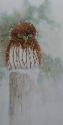 Need.Food. Acrylic Owl Painting by Lisa Gibson