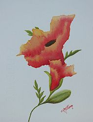 Open Up Study Small Poppy Painting by Lisa Gibson