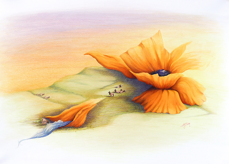 Sanctuary Poppy Painting by Lisa Gibson